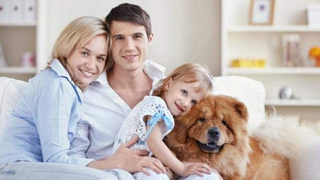 Wills & Trusts dog-young-family Direct Wills Ruislip